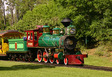 WDW Railroad locomotives