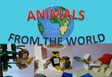 Animals from the World